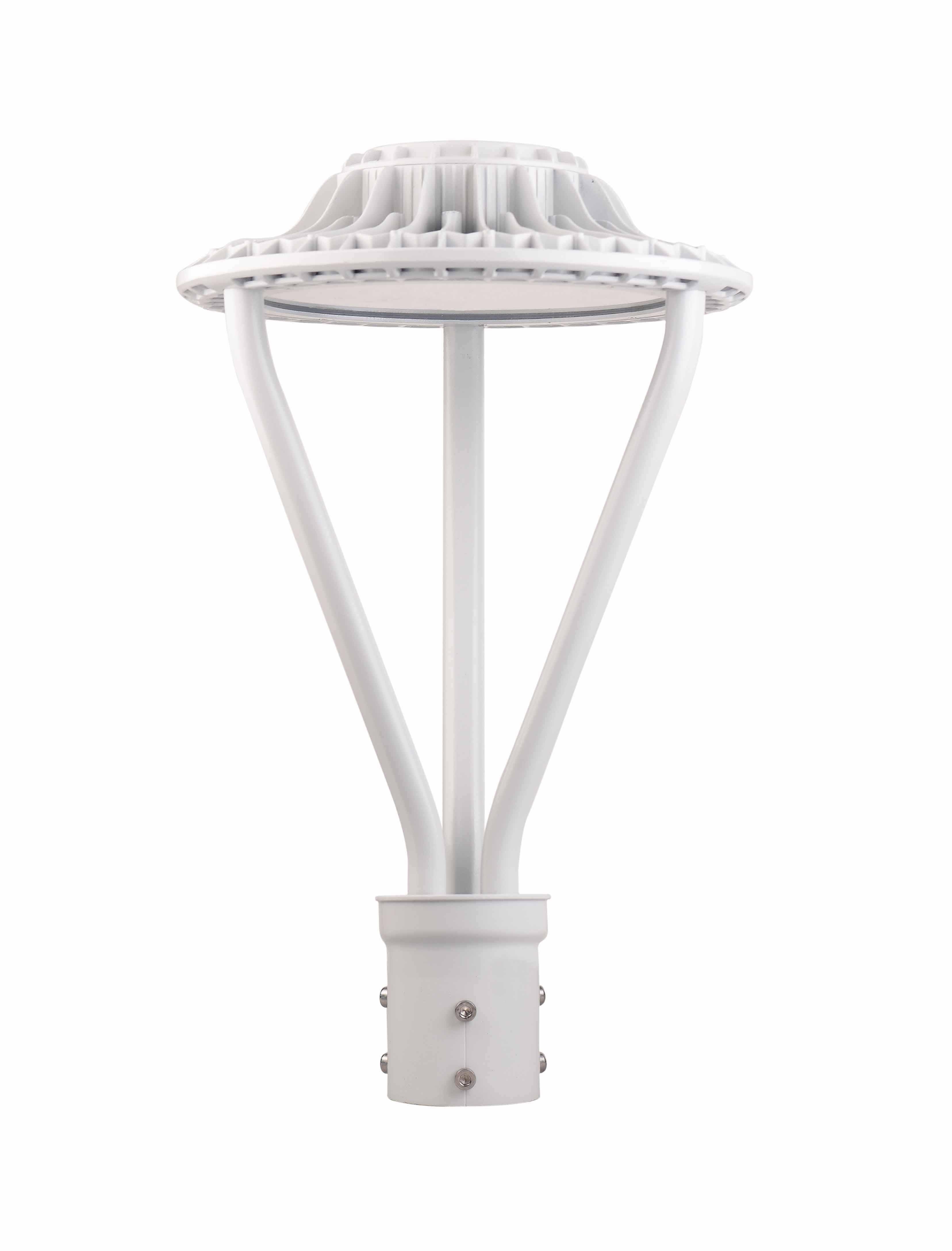 100W Garden Light